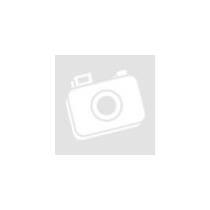KINGMAX Memóriakártya MicroSDHC Pro 16GB Class 10 UHS1 + adapter (KM16GMCSDUHSP1A-1)
